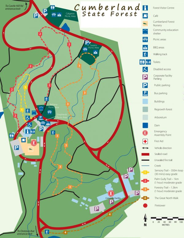 cumberland state forest map