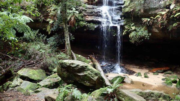 oaklands falls horseshoe falls