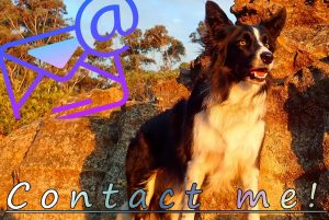 email contact me