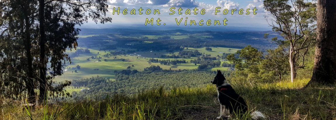heaton state forest