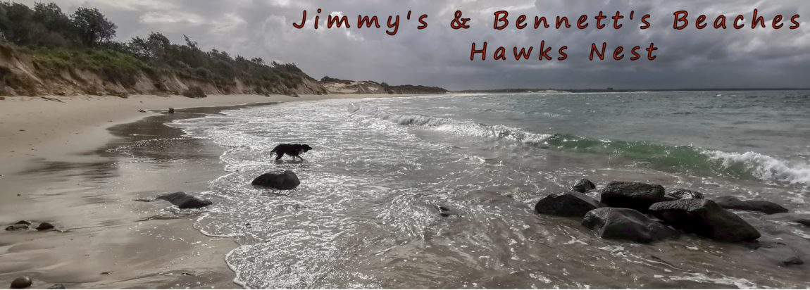 title jimmys beach