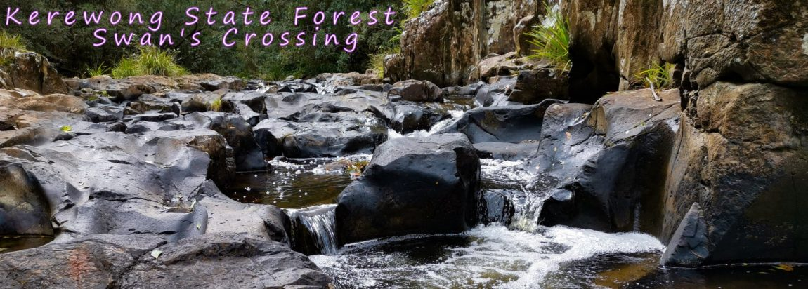 title kerewong state forest